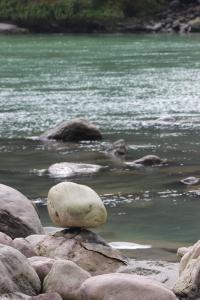 Ganges IMG_5647