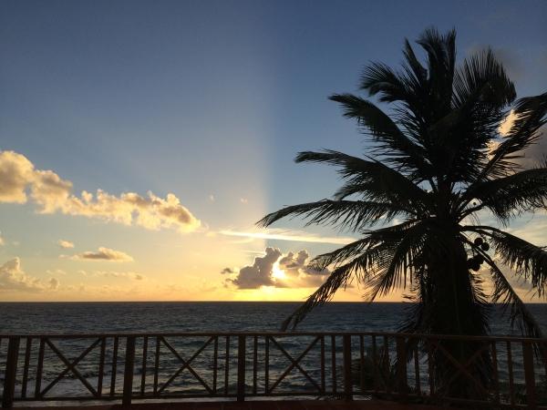 Bahamas 04 IMG_3079
