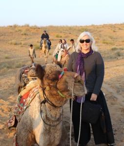 17 Camel IMG_4050