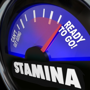 The word Stamina on a fuel gauge measuring your drive, power, en