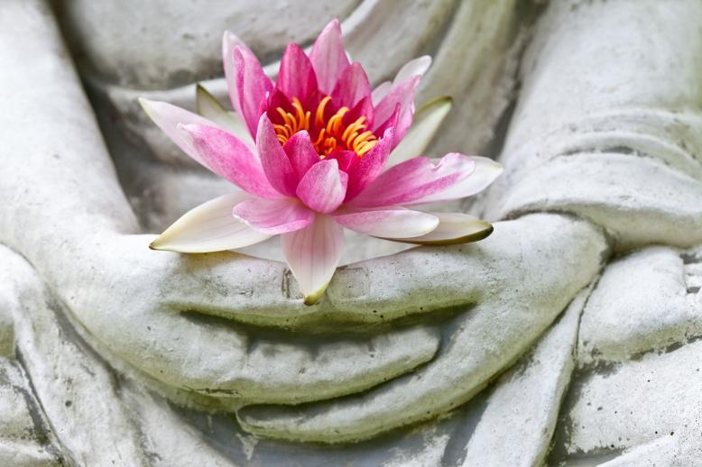 bigstock-Buddha-hands-holding-flower-47788762